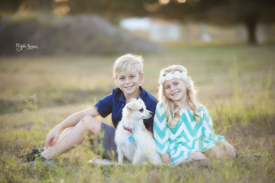 Great sibling photo in a field with the dog, Fort Myers, Florida Custom Family Photographer. www.julierennerphotography.com