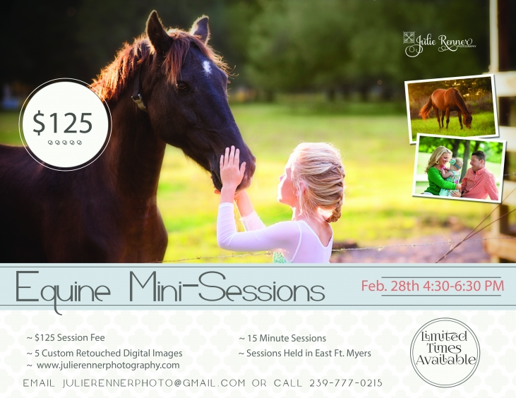 Equine Mini-Sessions, Fort Myers, Florida