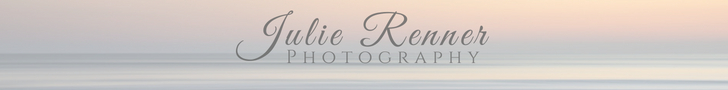 Modern Fort Myers Family Photography by Julie Renner Photography logo